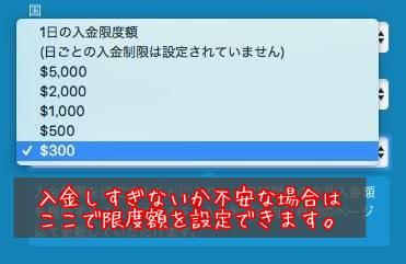 ベラジョンカジノの登録手順(パソコン)4