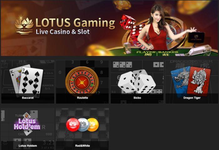 Lotus livebaccarat1