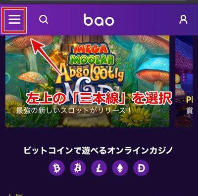 Baocasino support3