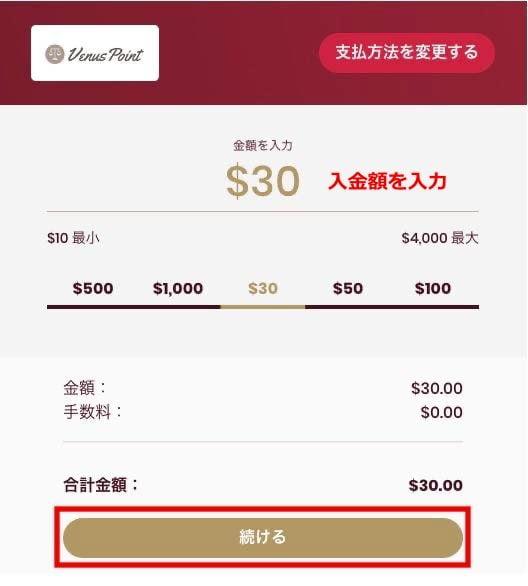 チェリーカジノ 入金方法12
