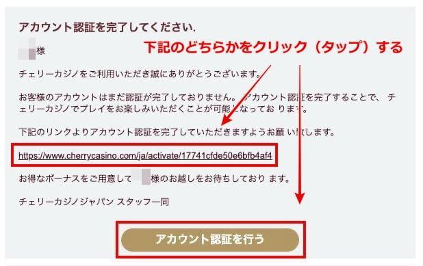 チェリーカジノ 登録方法7