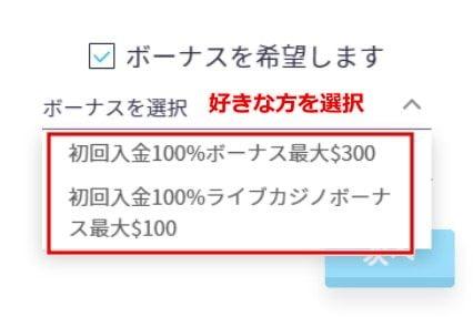 カジノゴッズ 入金方法8