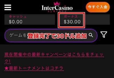 インターカジノ 登録方法9