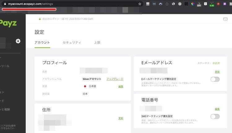 Ecopayz accountpage