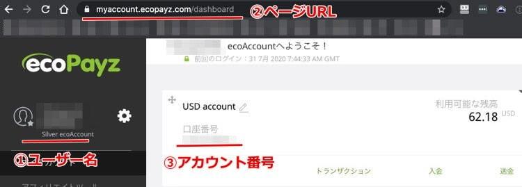 Ecopayz accountpage2