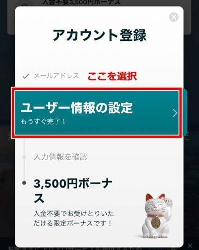ラッキーデイズカジノ 登録方法5