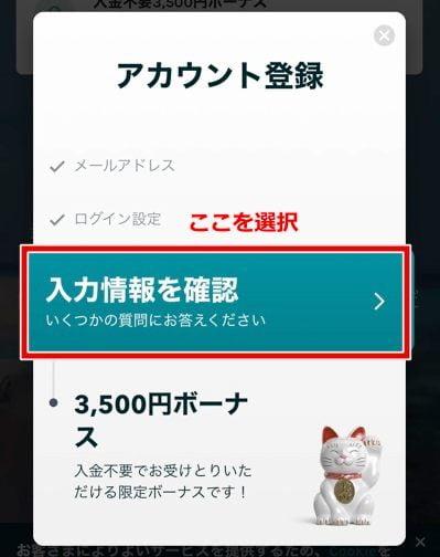 ラッキーデイズカジノ 登録方法8