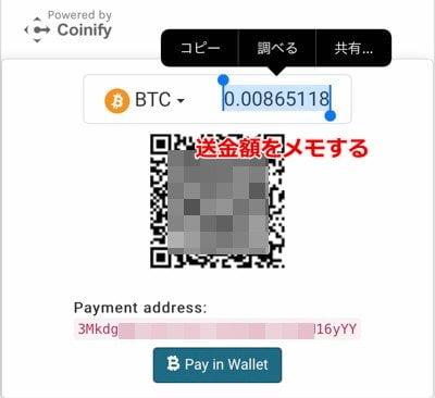 エコペイズ(ecoPayz) 仮想通貨入金14