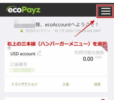 エコペイズ(ecoPayz) 仮想通貨入金2
