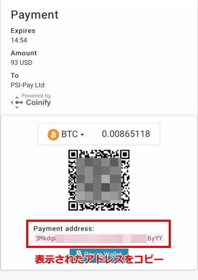 エコペイズ(ecoPayz) 仮想通貨入金6