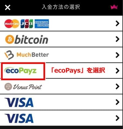 インターカジノ エコペイズ入金