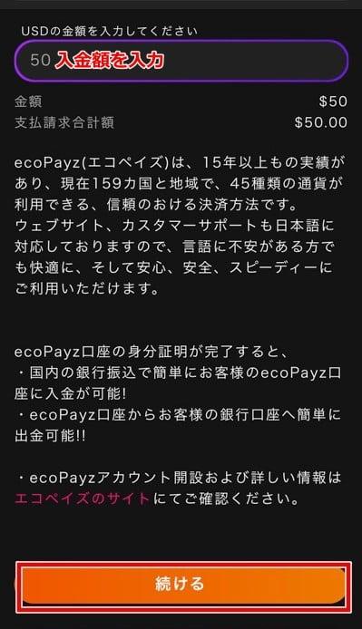 インターカジノ エコペイズ入金2