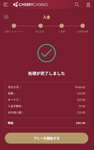 チェリーカジノ エコペイズ入金